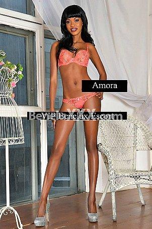 Amora escort girl � Gand