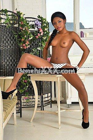 Antonia escort girl à Bruxelles